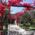 giardini-aree-comuni